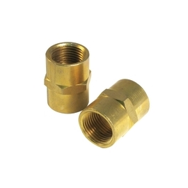 2 Pc Coupling 1/4 inch F NPT