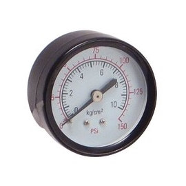Gauge indicator with back mount (13964)
